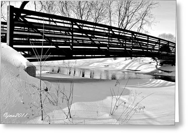 Winter Splendor In B And W Greeting Card by Janice Adomeit