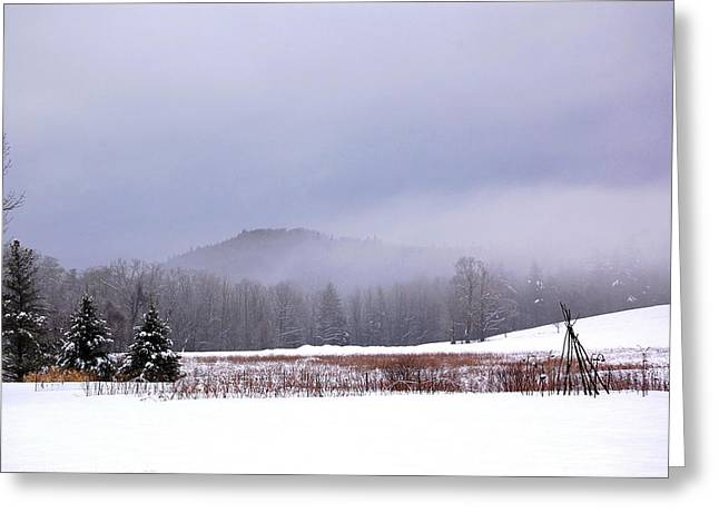 Greeting Card featuring the photograph Winter Strata by Mary McAvoy