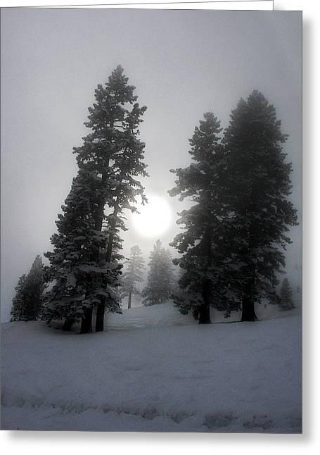 Winter Sun Greeting Card by Alex Lemus