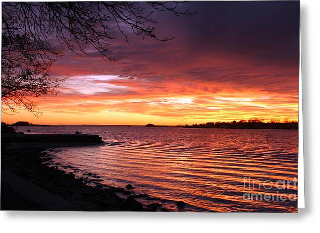 Winter Sunset Greeting Card by Butch Lombardi