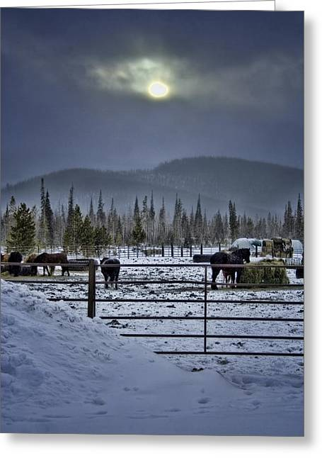 Winter Sunset On The Ranch Greeting Card by Ellen Heaverlo