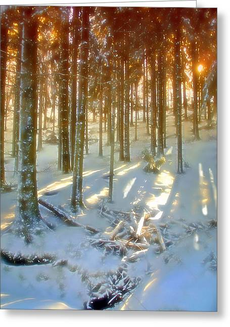 Greeting Card featuring the photograph Winter Sunset by Rod Jones