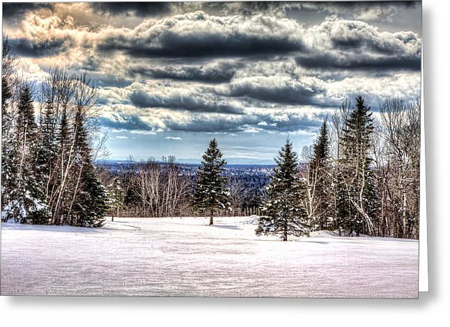 Winter Time Greeting Card by Gary Smith