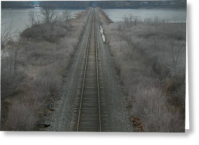 Winter Tracks  Greeting Card by Neal Eslinger