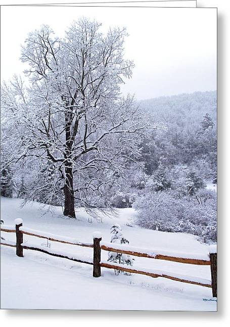 Winter Tree And Fence In The Valley Greeting Card