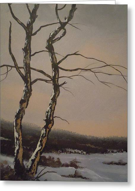 Winter Trees Greeting Card by James Guentner