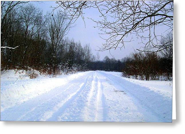 Winter Well Road Greeting Card