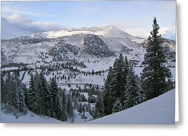 Winter Wonderland Fine Art Print Greeting Card by Ian Stevenson