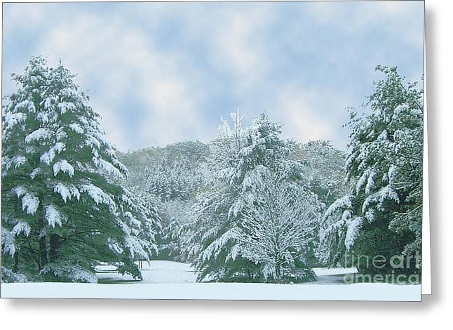 Greeting Card featuring the photograph Winter Wonderland In The South by Michael Waters