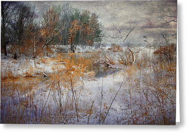 Greeting Card featuring the photograph Winter Wonderland by Mary Timman