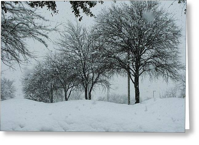 Winterlude Greeting Card by Shawn Hughes