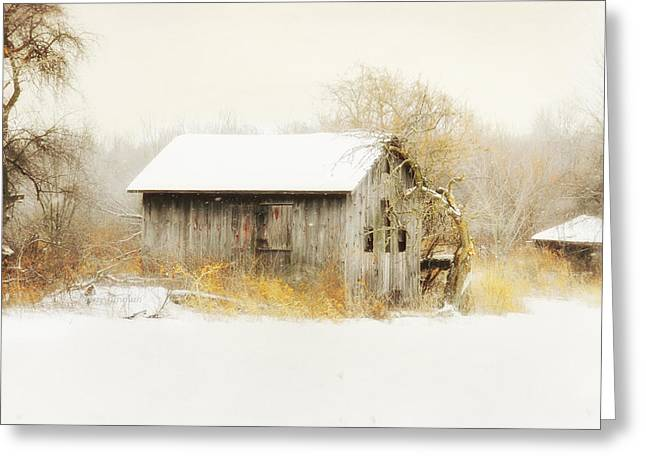 Greeting Card featuring the photograph Winters Rage by Mary Timman