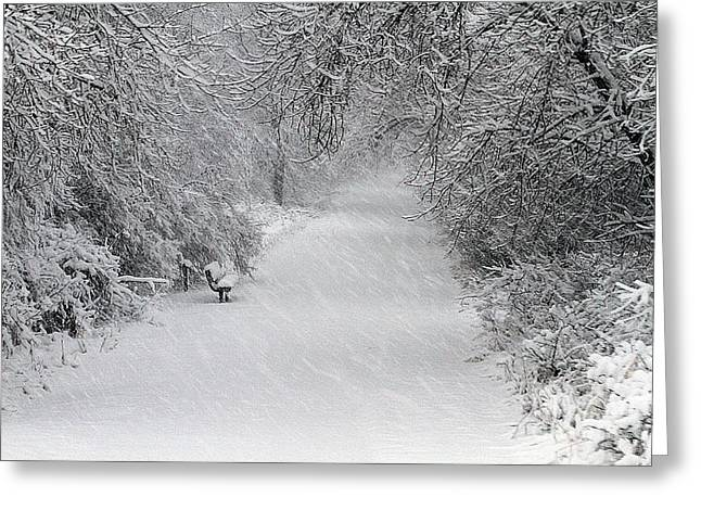 Winter's Trail Greeting Card by Elizabeth Winter