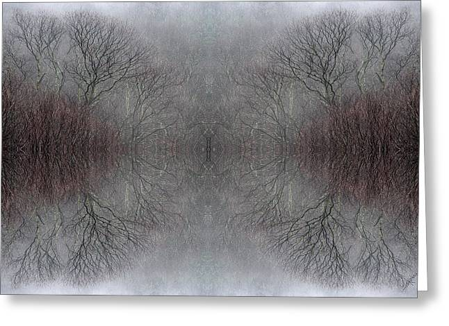 Wintertime Dreamtime Greeting Card by Ed Kelley