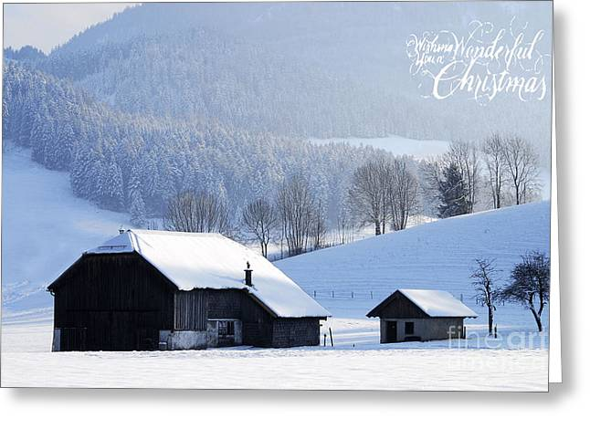 Wishing You A Wonderful Christmas Greeting Card by Sabine Jacobs