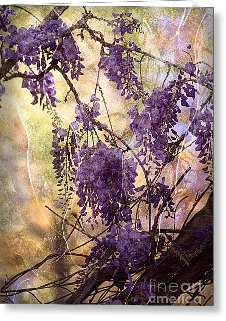 Wisteria Lane Greeting Card by Janeen Wassink Searles