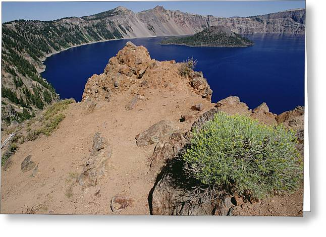 Wizard Island And Lake Shore, Mt Greeting Card by Gerry Ellis
