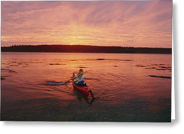 Woman Kayaking At Dusk, Penobscot Bay Greeting Card by Skip Brown