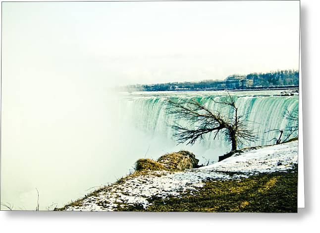 Greeting Card featuring the photograph Wonder by Sara Frank