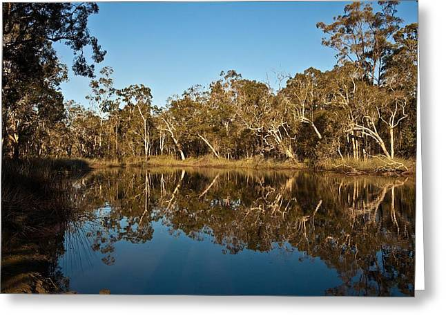Wongi Water Holes Greeting Card by David Barringhaus