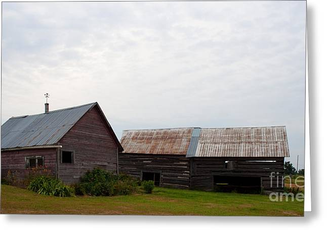 Greeting Card featuring the photograph Wood And Log Sheds by Barbara McMahon