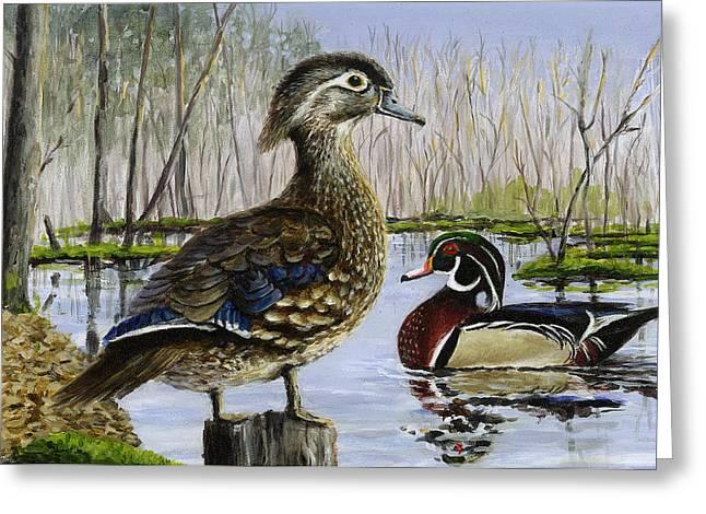 Wood Duck Greeting Card by Paul Gardner