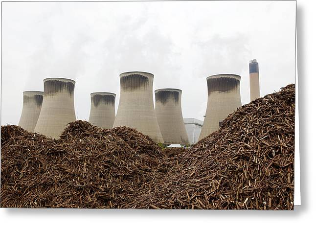 Wood Fuel For Power Station Greeting Card