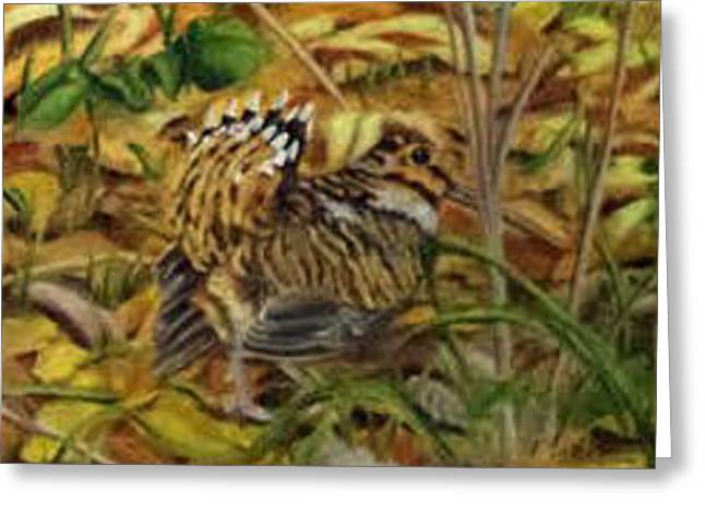 Woodcock Mating Season Greeting Card by David Keene