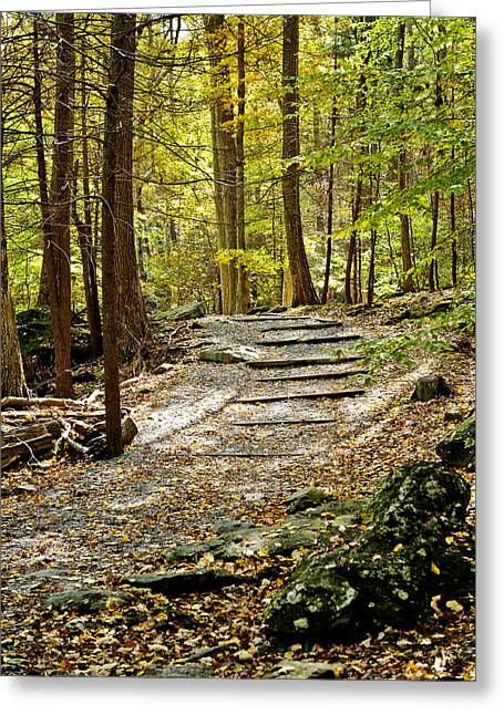 Wooded Stairway Greeting Card