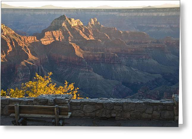Wooden Bench At Canyon Greeting Card