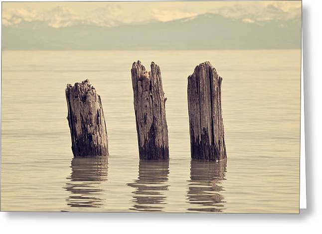 Wooden Piles Greeting Card by Joana Kruse
