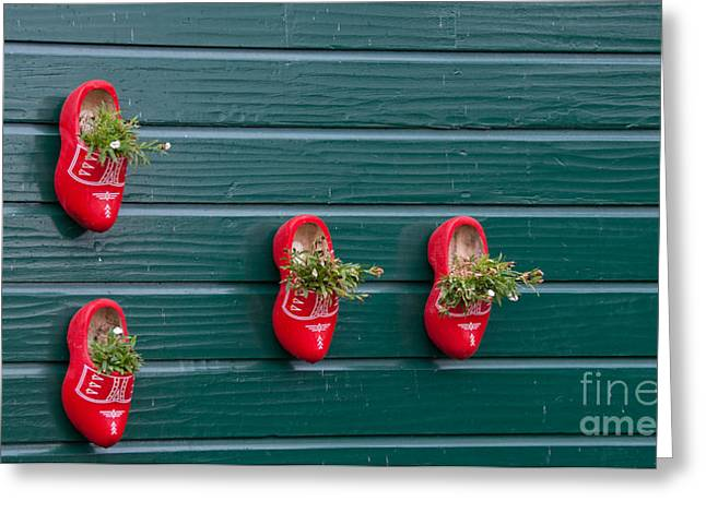 Wooden Shoes On Teh Wall Greeting Card by Carol Ailles