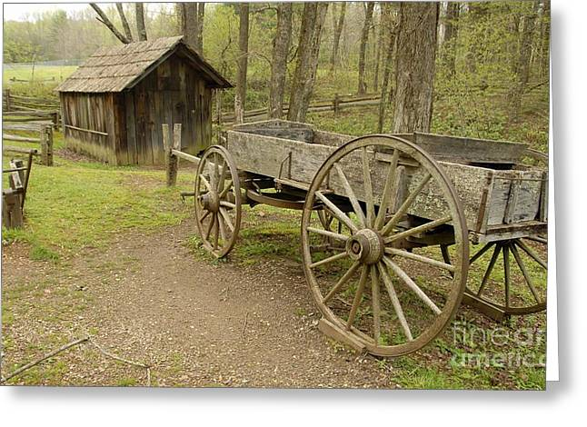 Wooden Wagon Greeting Card by Cindy Manero