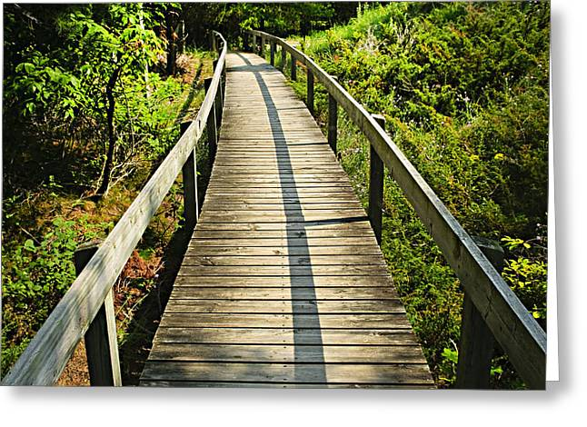 Wooden Walkway Through Forest Greeting Card
