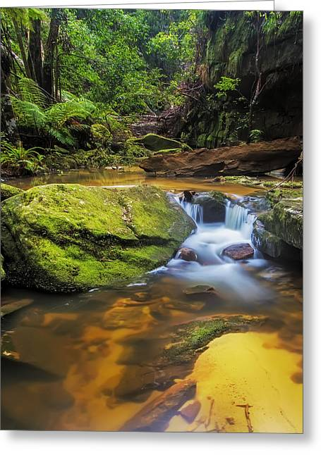 Woodford's Gem Greeting Card by Mark Lucey
