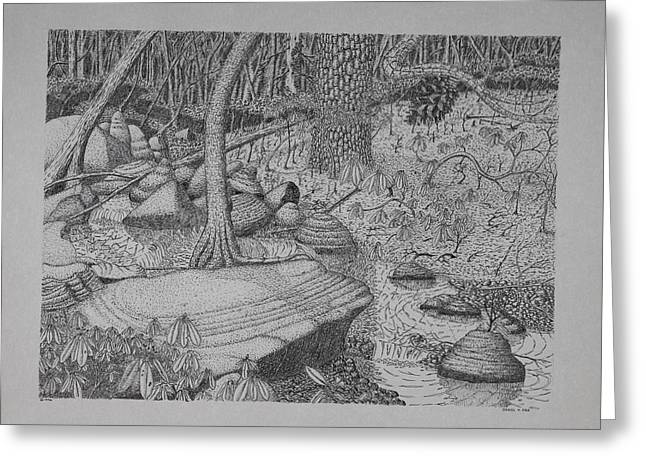 Greeting Card featuring the drawing Woodland Stream by Daniel Reed