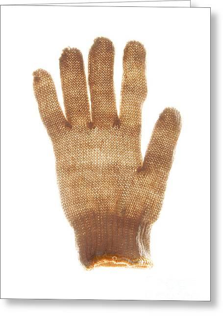 Woolen Glove Greeting Card