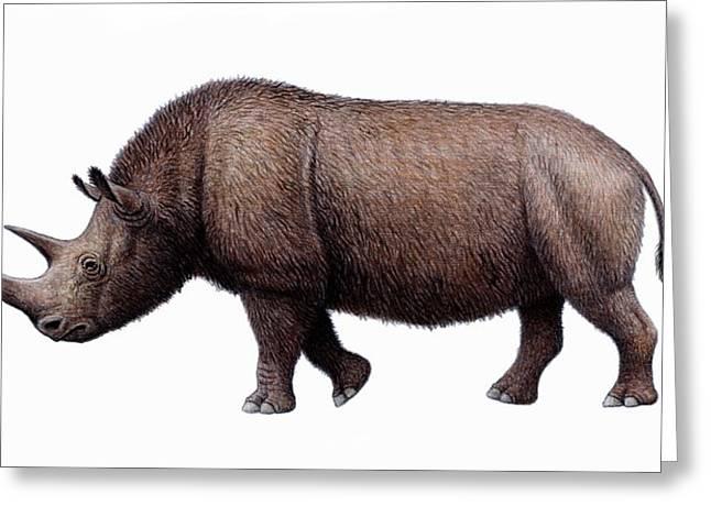 Woolly Rhinoceros, Artwork Greeting Card by Mauricio Anton