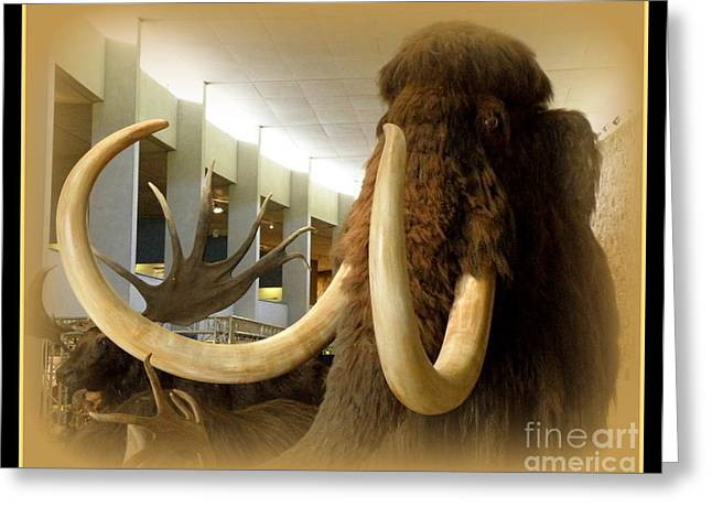 Wooly Mammoth Greeting Card by Lainie Wrightson