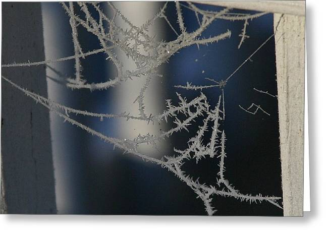 Work Of Spider And Winter Greeting Card by Paula Tohline Calhoun