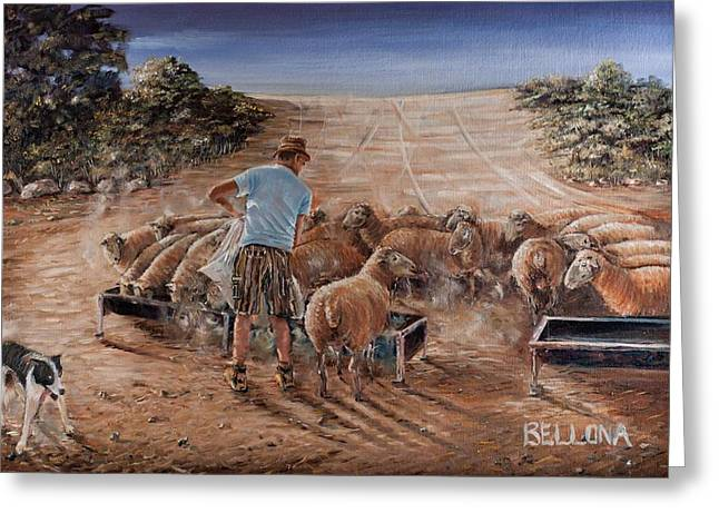 Working Sheep In South-africa Greeting Card by Wilma Kleinhans