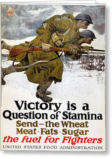 World War I: Poster, 1917 Greeting Card by Granger