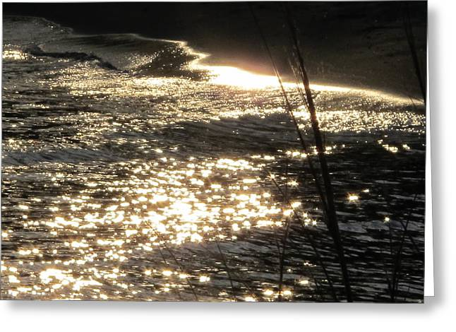 Write With Light Greeting Card by Valia Bradshaw