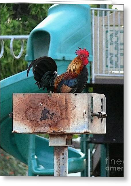 Wrong Playground Mr Rooster Greeting Card by Terri Thompson