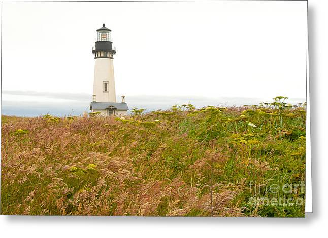 Yaquina Head Lighthouse In Oregon Greeting Card by Artist and Photographer Laura Wrede