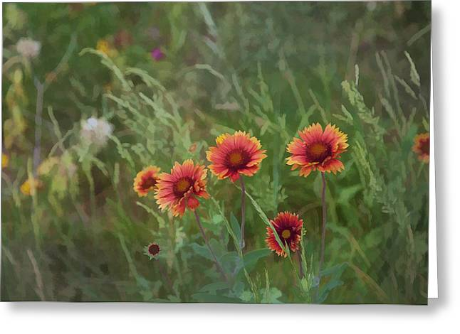 Greeting Card featuring the photograph Yawn...more Flowers by John Crothers