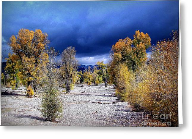 Greeting Card featuring the photograph Yellow And Blue by Irina Hays