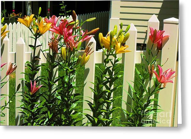 Yellow And Pink Day Lillies Greeting Card by Annie Gibbons