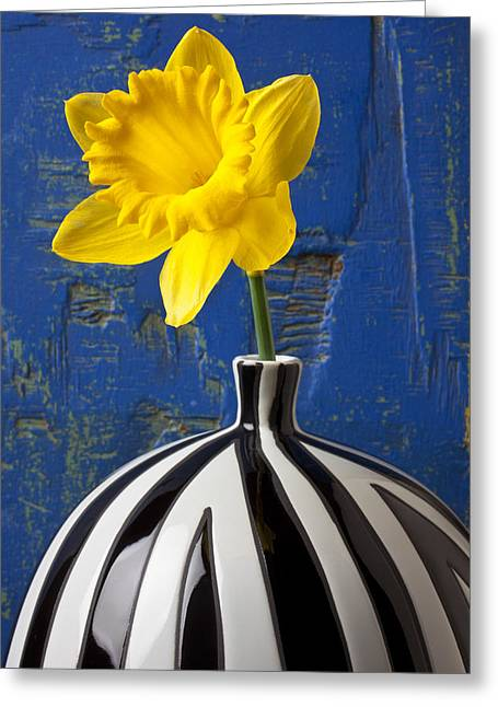 Yellow Daffodil In Striped Vase Greeting Card by Garry Gay