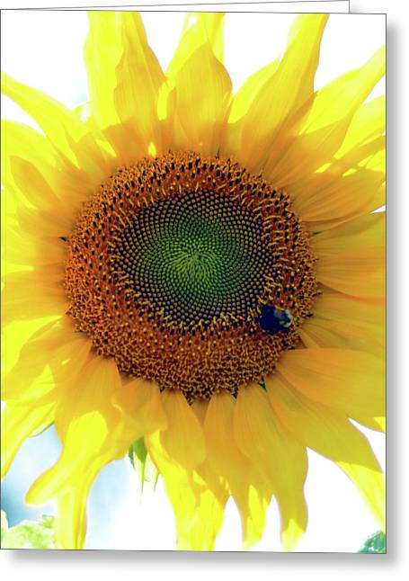 Yellow Day Greeting Card